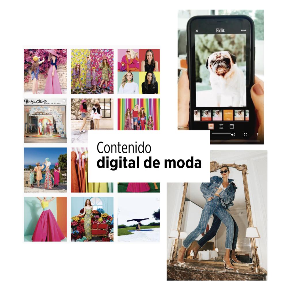 contenido digital de moda